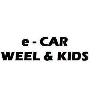 Ηλεκτρικά Αμαξίδια(αναπηρικά, παιδικά)